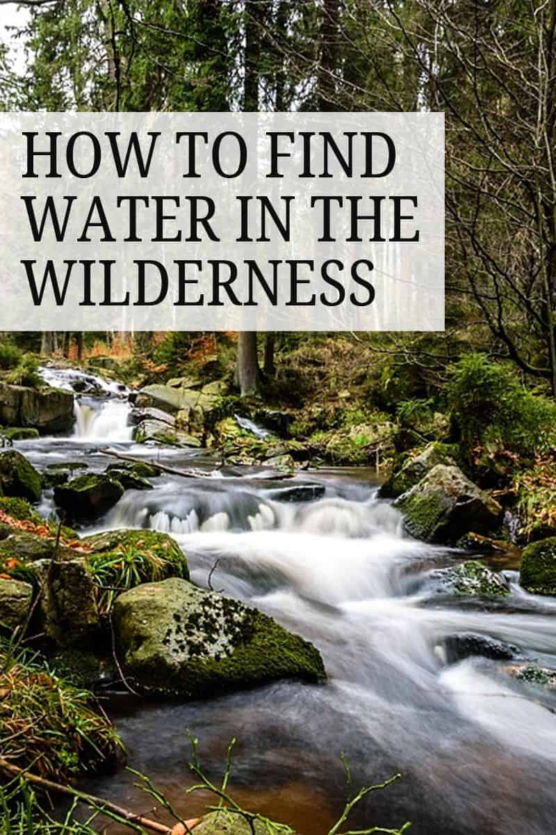finding water in the wild pinterest